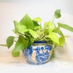 Вазон-кашпо «Синие цветы»